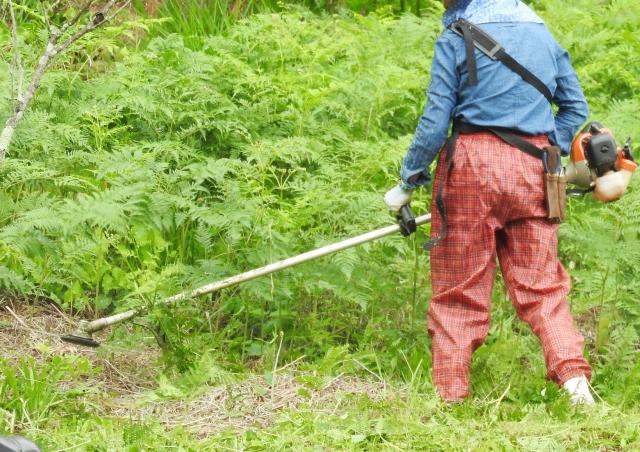 河南町で草刈りにかかる料金相場は?追加料金や業者選びのコツまで解説