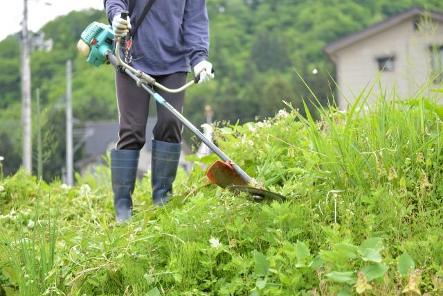 河南町で草刈りに最適な年3回の時期~楽に草刈りを終えるコツまで徹底解説